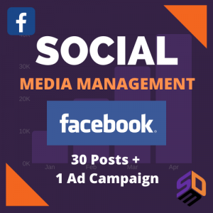 Brand Promotion: Facebook Management Per Account (30 Posts) 2